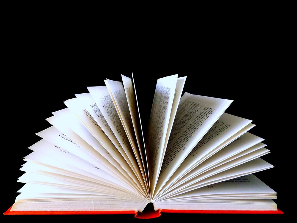 B_LisaMee03_Book.jpg