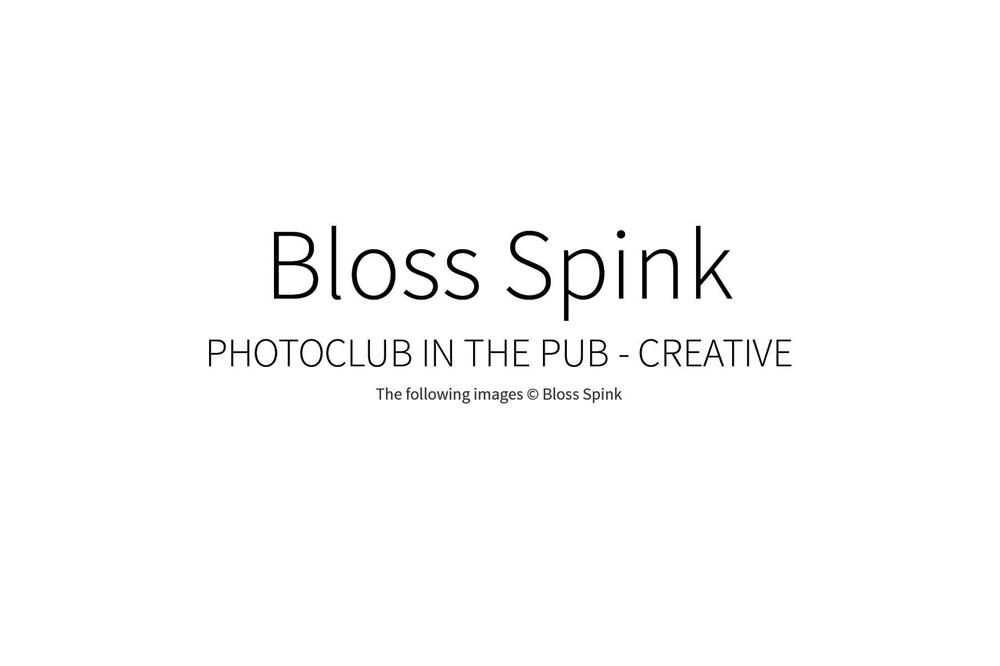 BlossSpink_00w.jpg