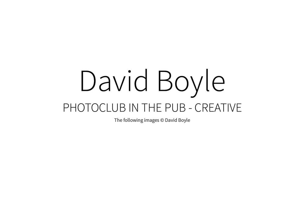 DavidBoyle_00w.jpg