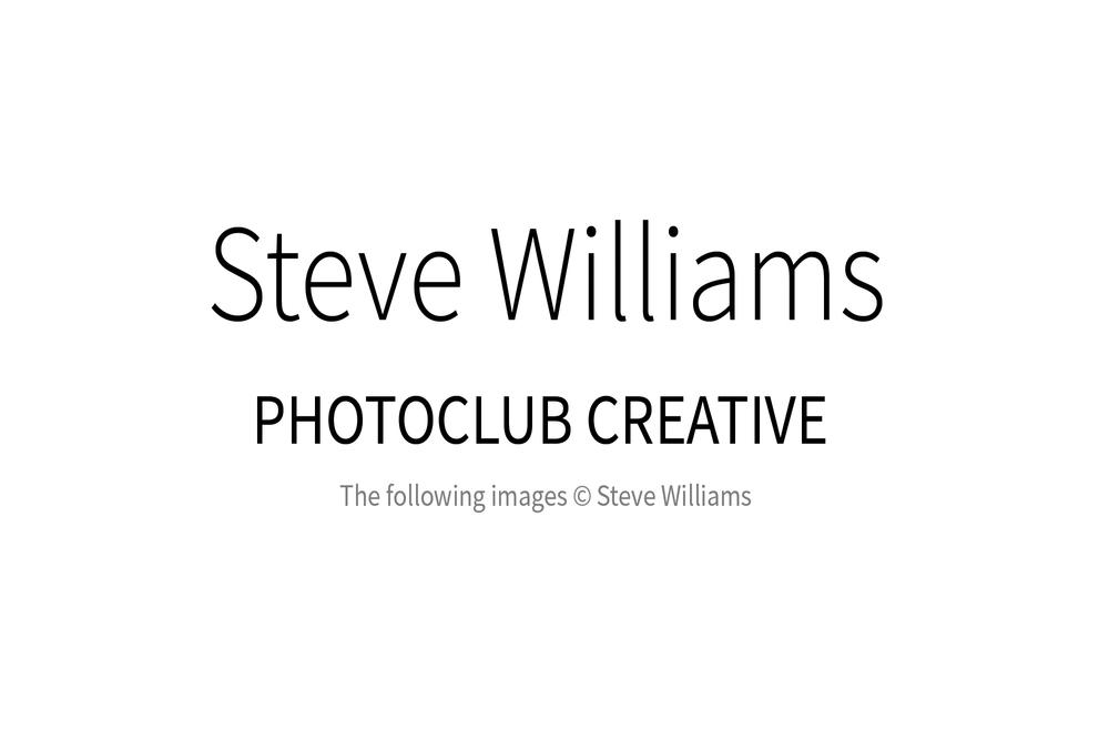 SteveWilliams_00w-2.jpg
