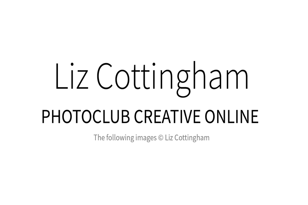 liz_cottingham_00w.jpg