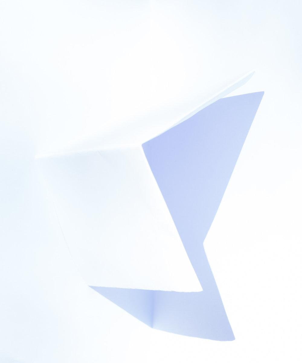 BlossSpink_01_whitepaper_2000px.jpg