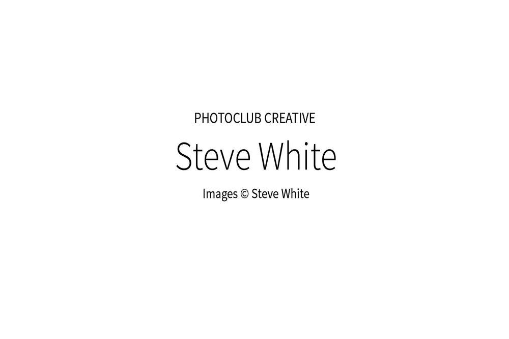 SteveWhite_00w_2000px.jpg