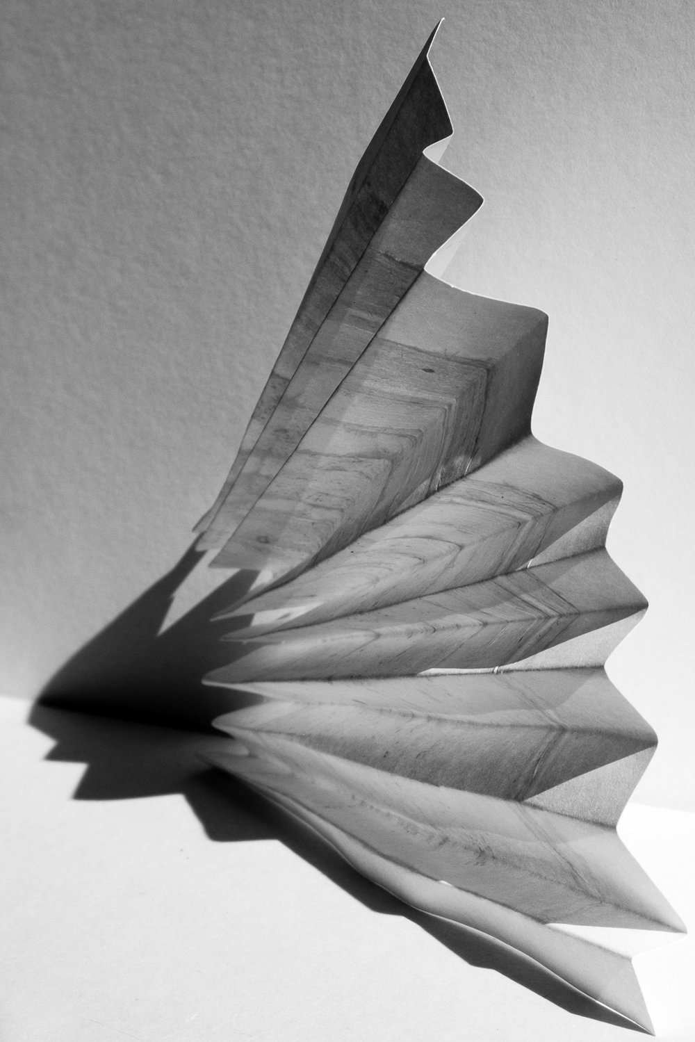LizCottingham_02_whitepaper_02_2000px.jpg