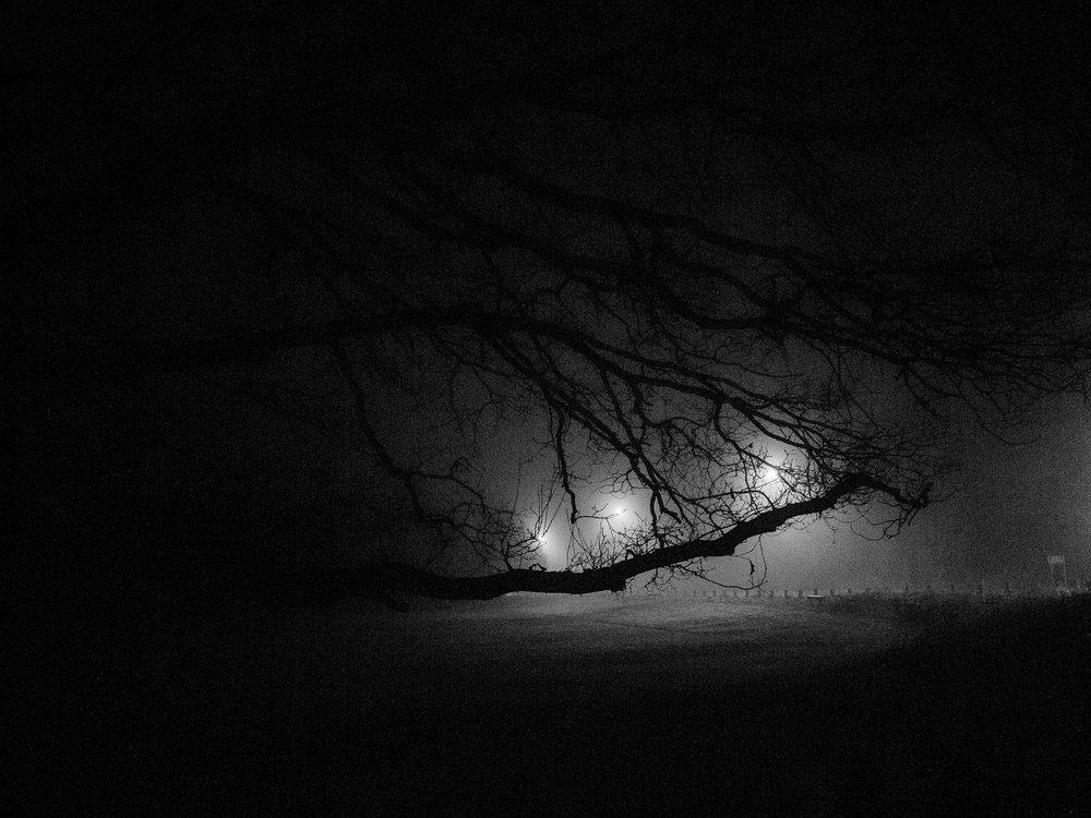 AngeloGifford_04_night-2_2000px.jpg