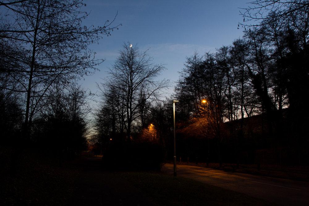 JanLane_01_Night_2000px.jpg