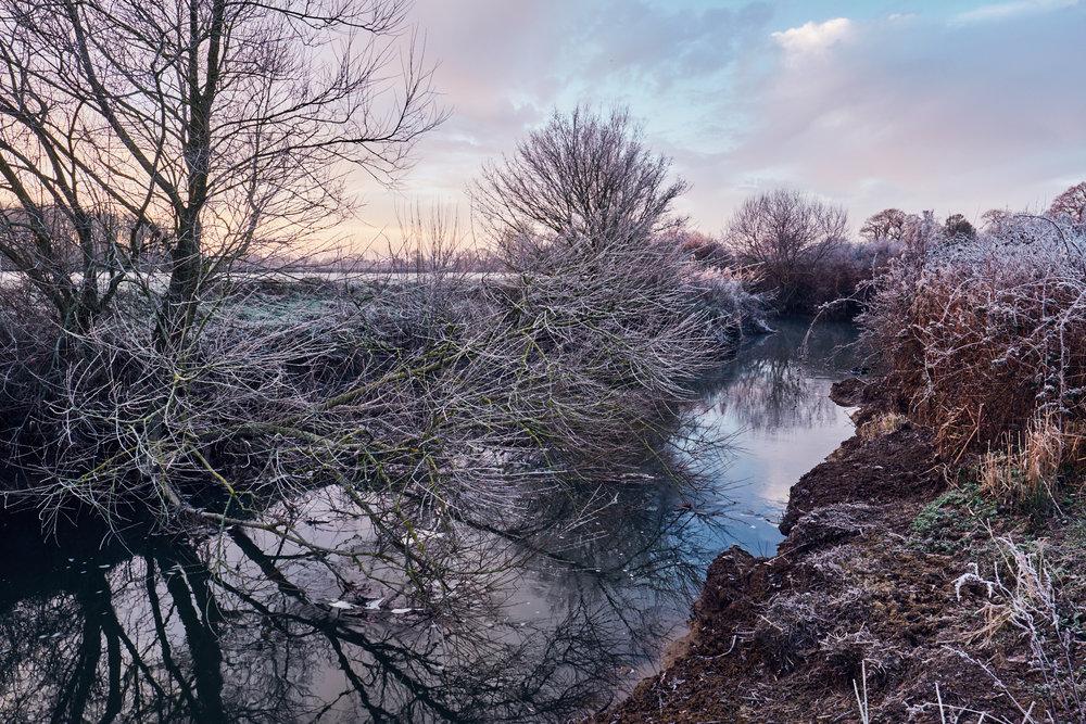 Sussex, 2016