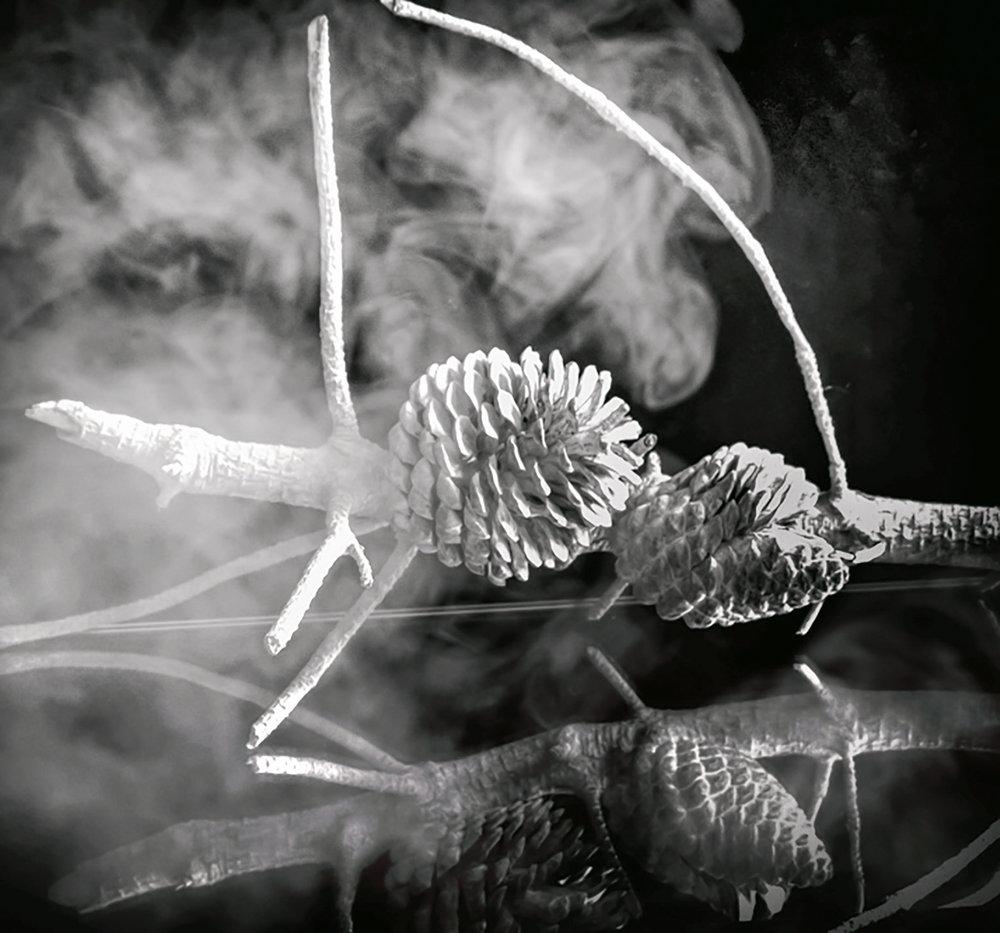 lorrainepinkerton_04_smoke_2000px.jpg