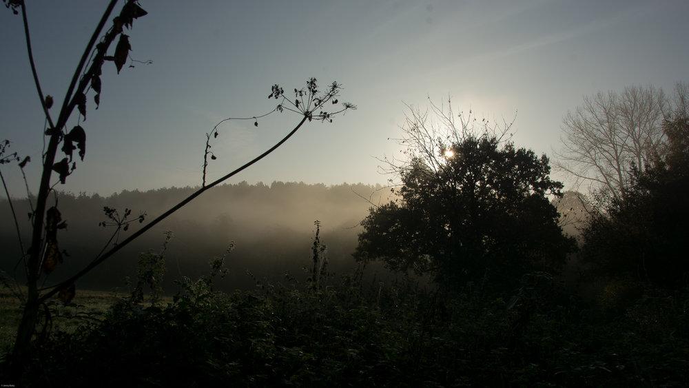 JennyBatty_02_Landscape.jpg