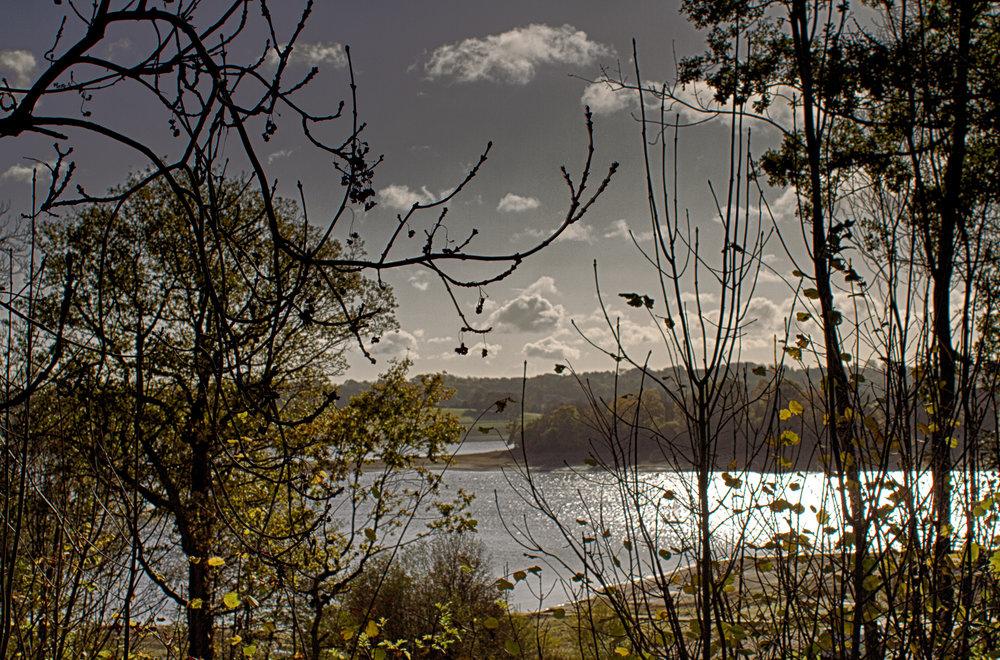 LorrainePinkerton_04_Landscape.jpg