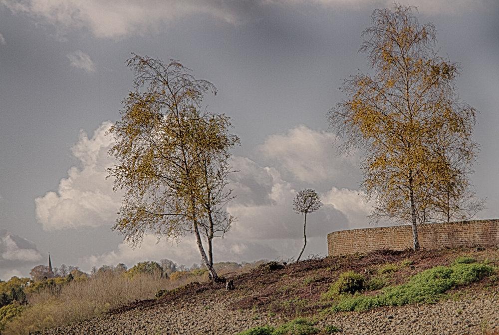 LorrainePinkerton_06_Landscape.jpg