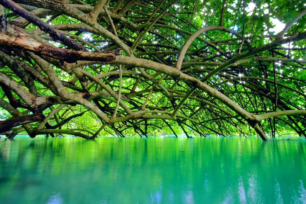 RaphaelRicklin_04_Landscape.jpg