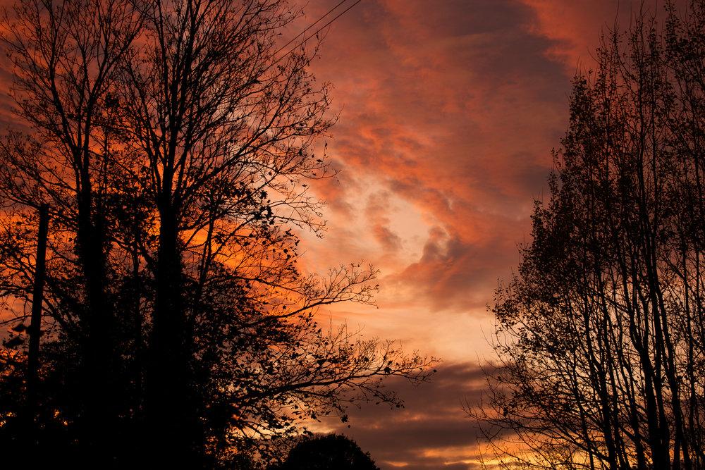 SaraRevell_01_Landscapes.jpg