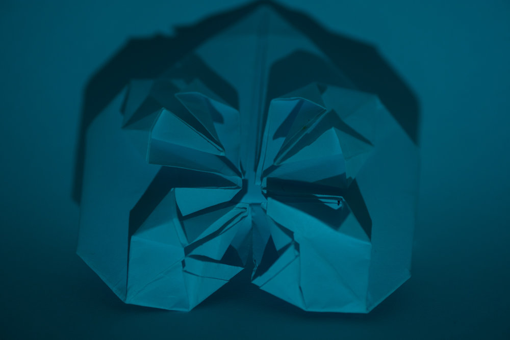LizBisson-WhitePaper-2.jpg