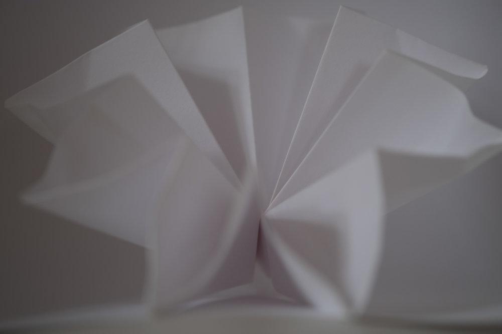 LizBisson-WhitePaper-5.jpg