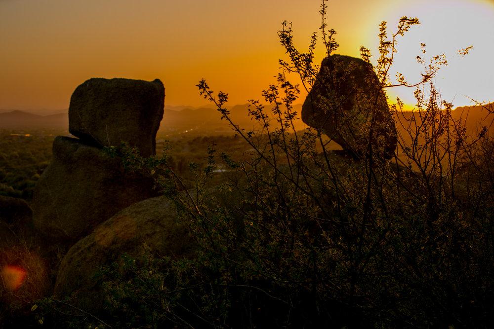 karenlevy_landscape_05.jpg