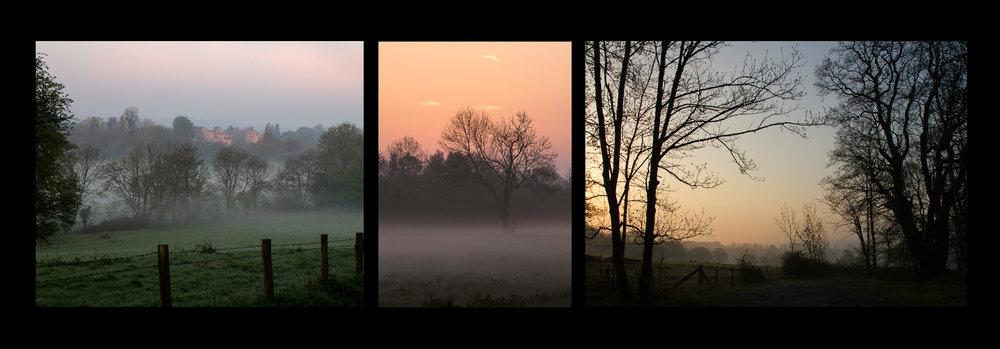 LizWilliams_04_Landscape.jpg