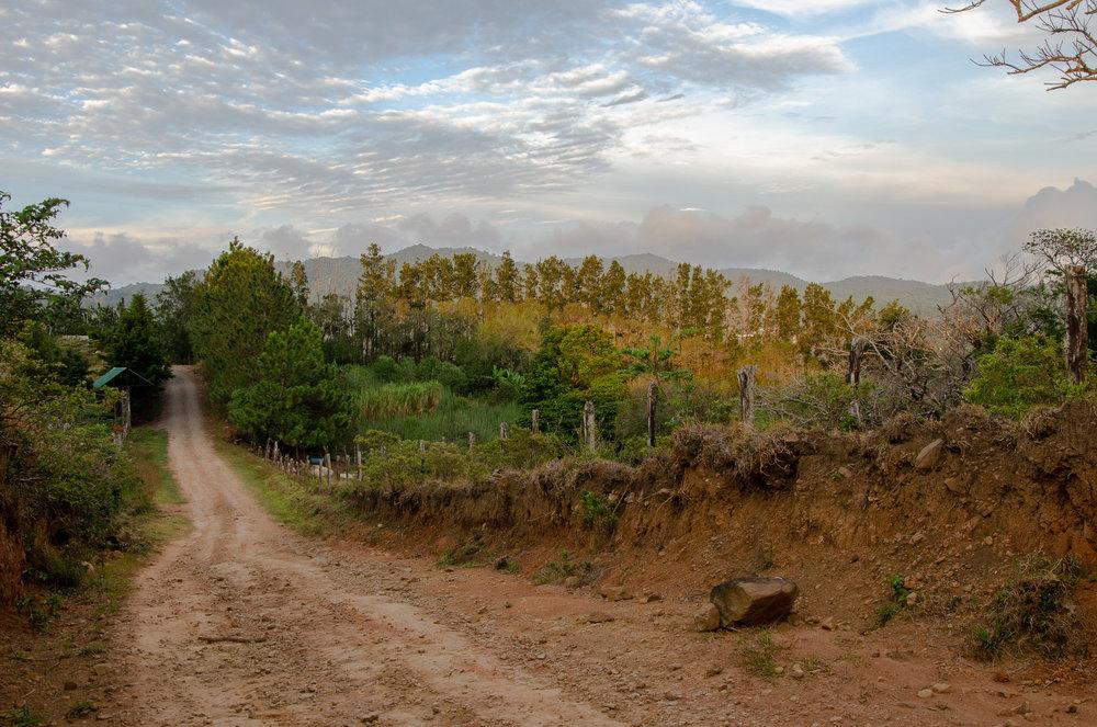 TonyHufflett_01_Landscape.jpg