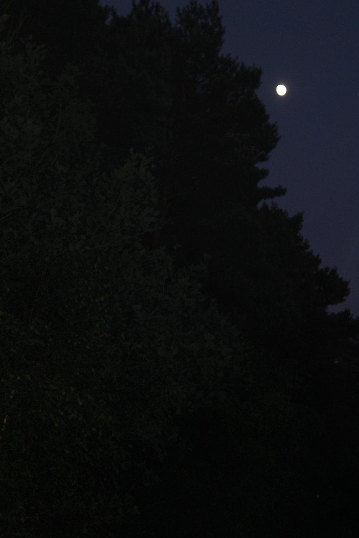 SharonNowell_02_Night Photography.jpg