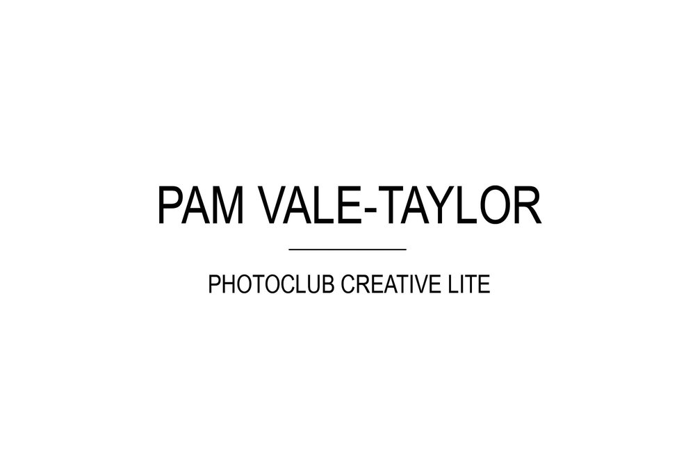 PamValeTaylor_00_Title_WhtBg.jpg
