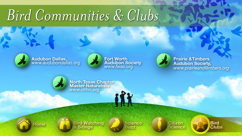 Online community for Bird watches linking visitors and local bird clubs together.