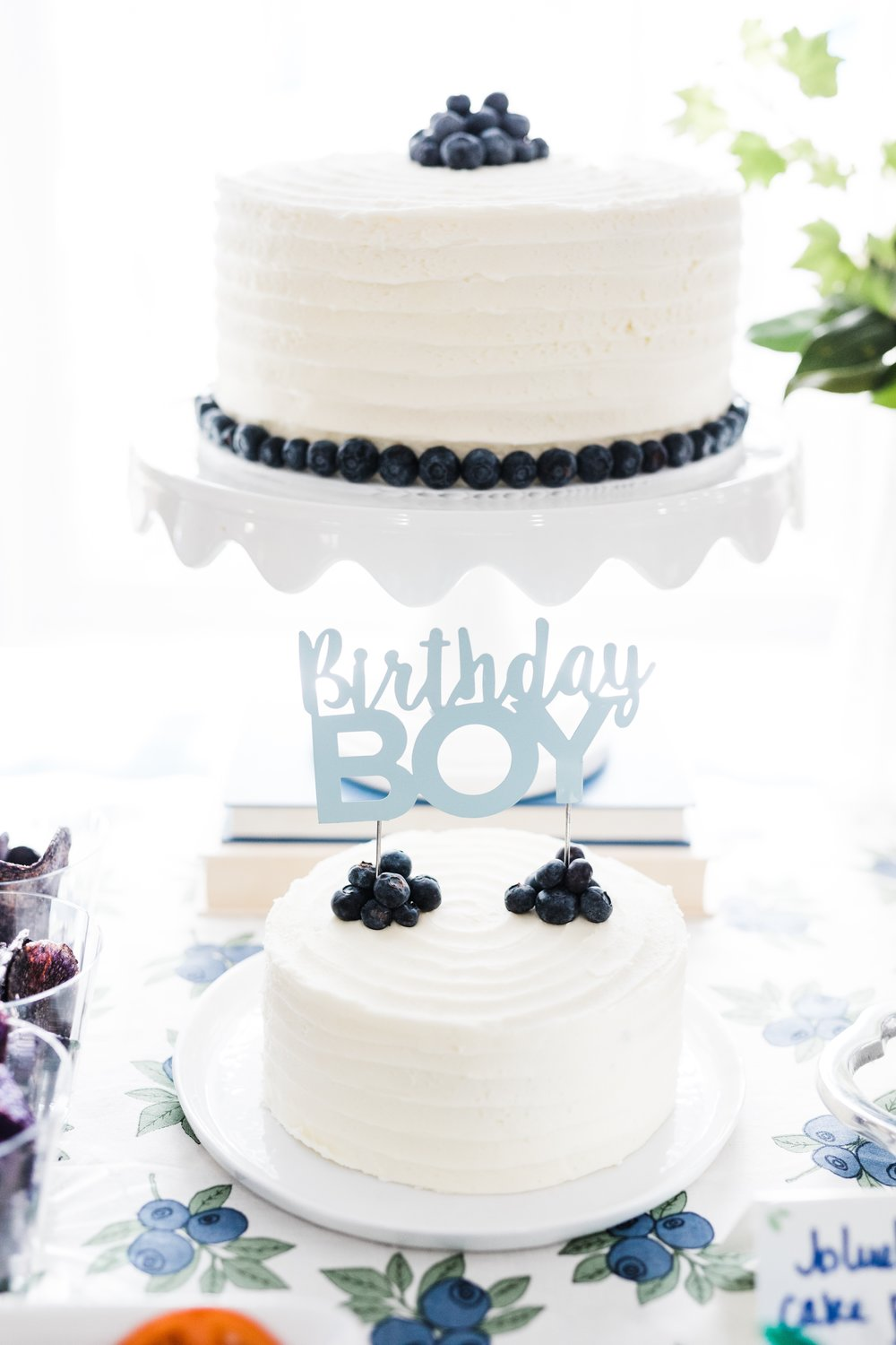 blueberry themed first birthday blueberry cake