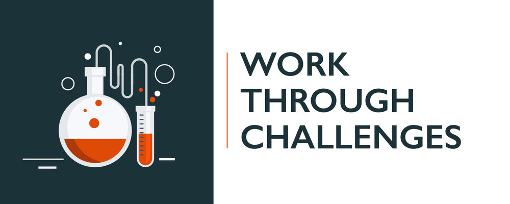 WORK THROUGH CHALLENGES-100.jpg