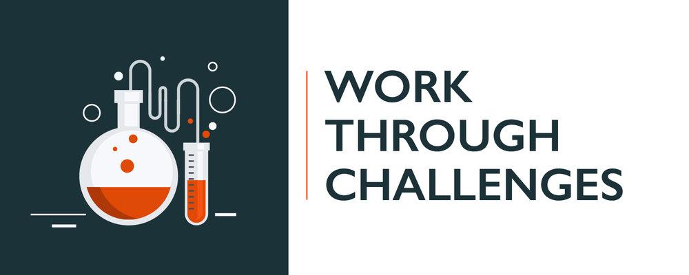 WORK THROUGH CHALLENGES-100.jpg
