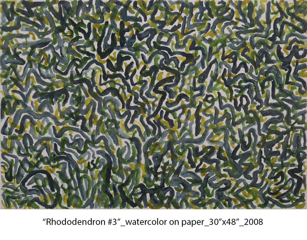 Rhododendron #3, 2008, watercolor on paper, 30%22x44%22, _web.jpg