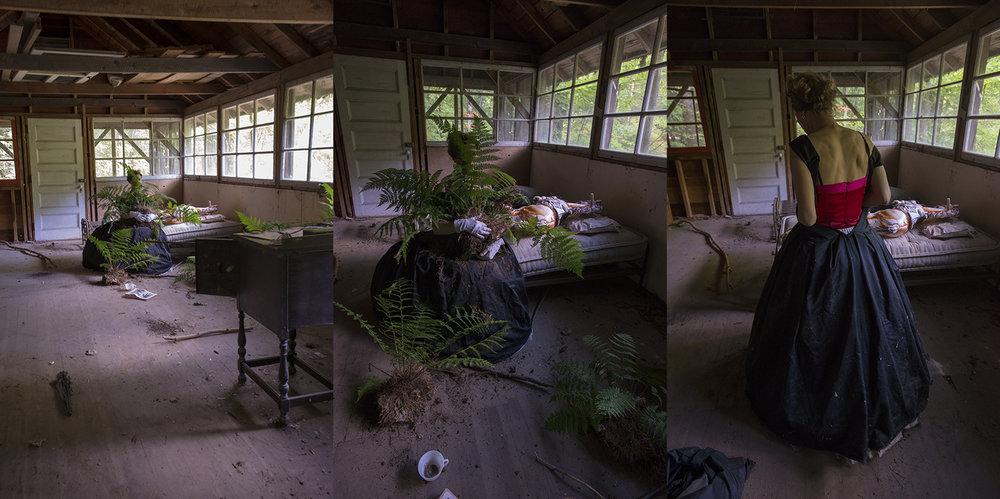 Ferns (Inside) - Triptych