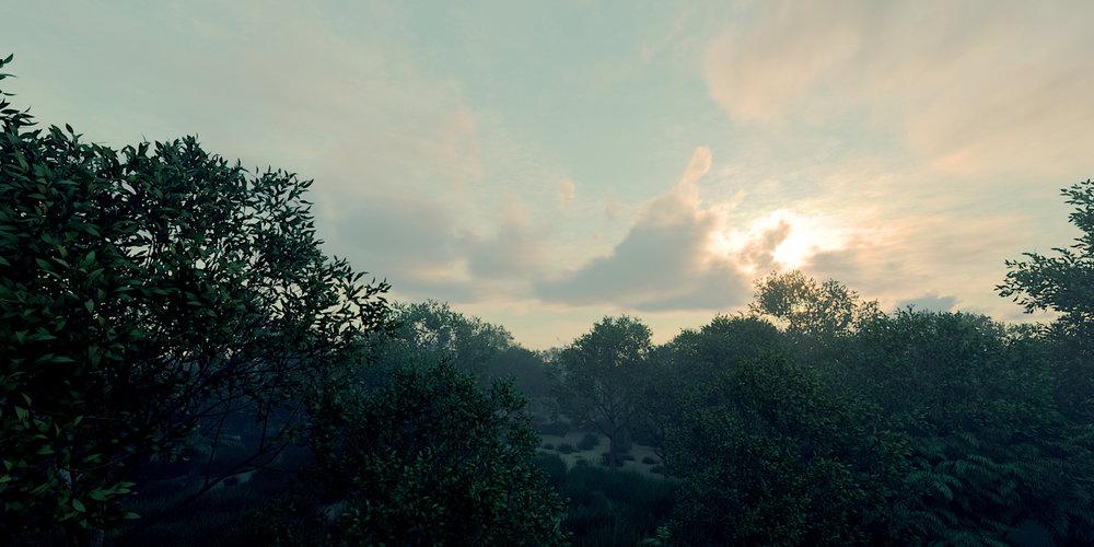 Tree Scene 03 Shot 01.jpg