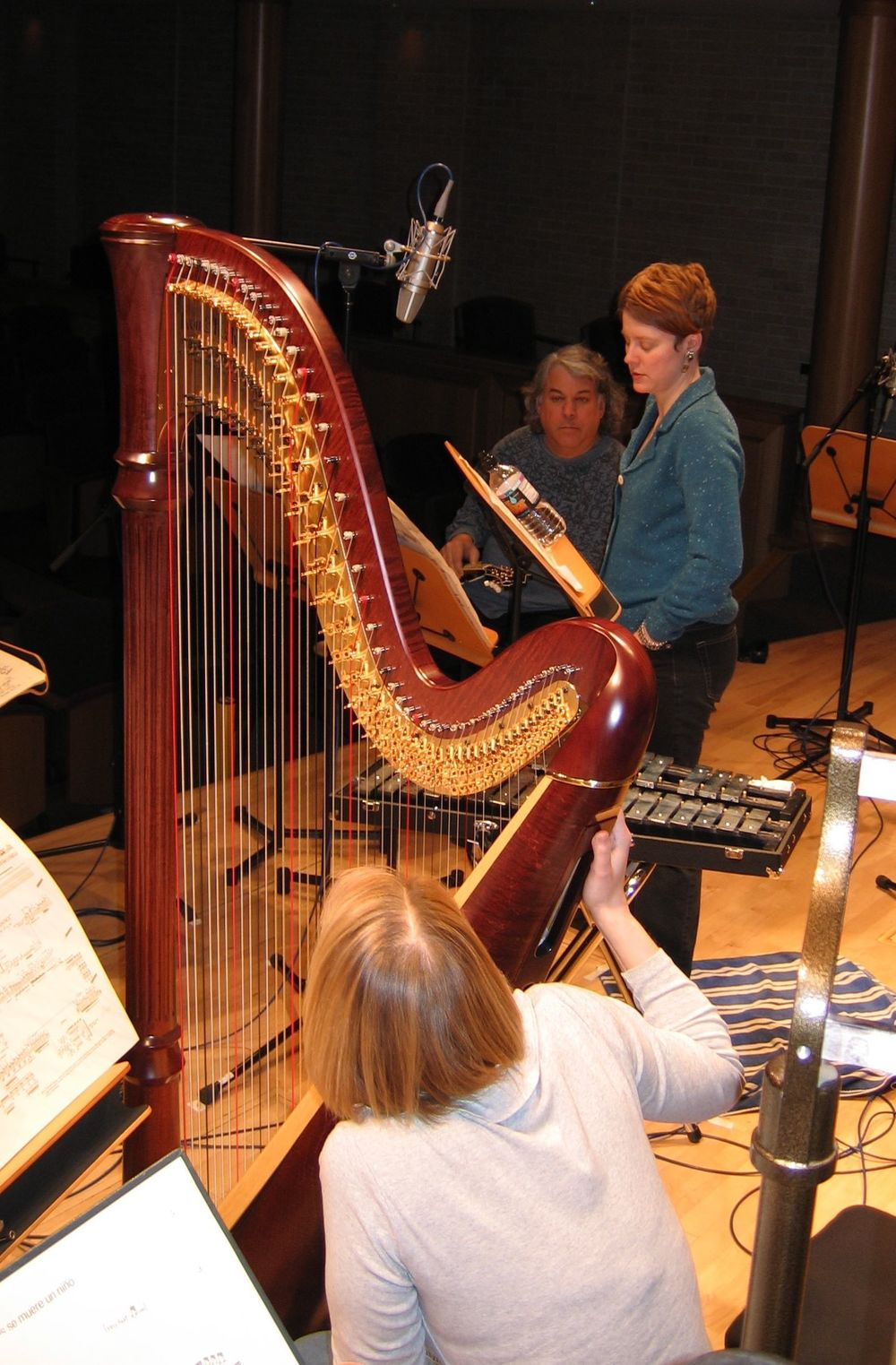 recording Crumb  Ancient Voices  for Bridge Records, 2005.  photo: Steve Bruns