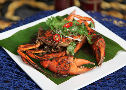 Black Pepper Live Mud crab