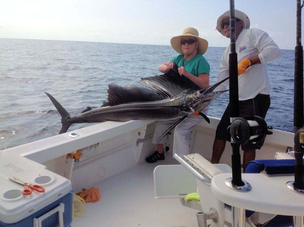 Sailfish boated by Pat Carnes