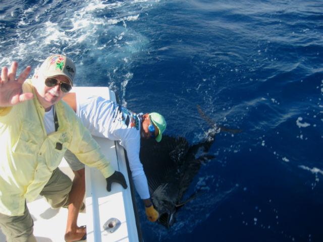 sailfishing in quepos