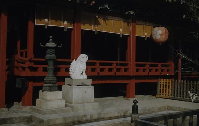 00.daizaifu(01).jpg
