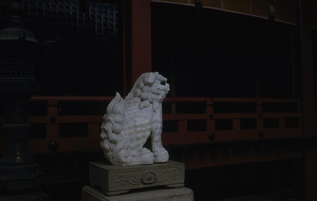 00.daizaifu(04).jpg