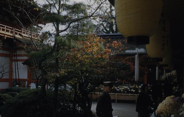 00.daizaifu(03a).jpg