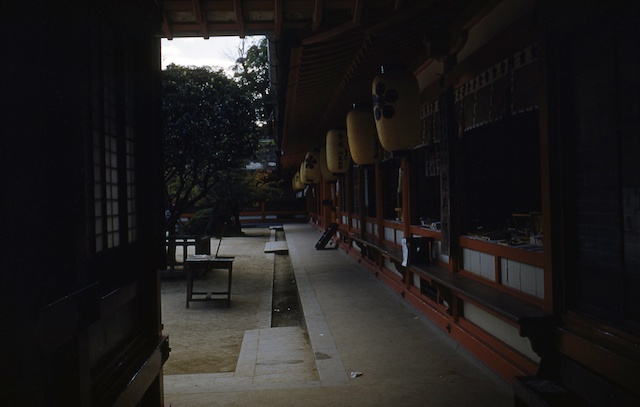 00.daizaifu(05).jpg