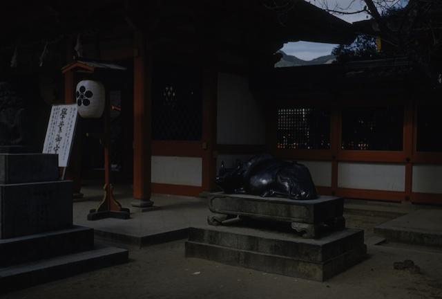 00.daizaifu(09).jpg