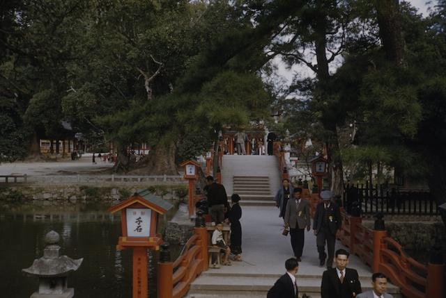 00.daizaifu(12).jpg