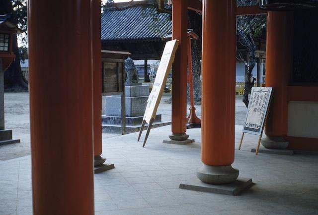 00.daizaifu(12a).jpg