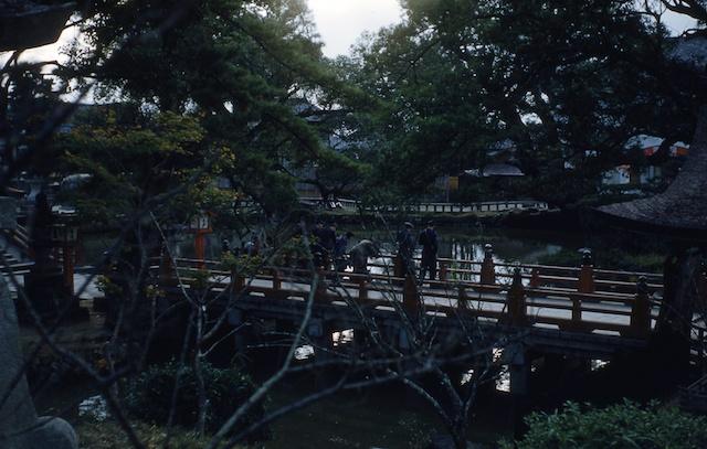 00.daizaifu(14).jpg