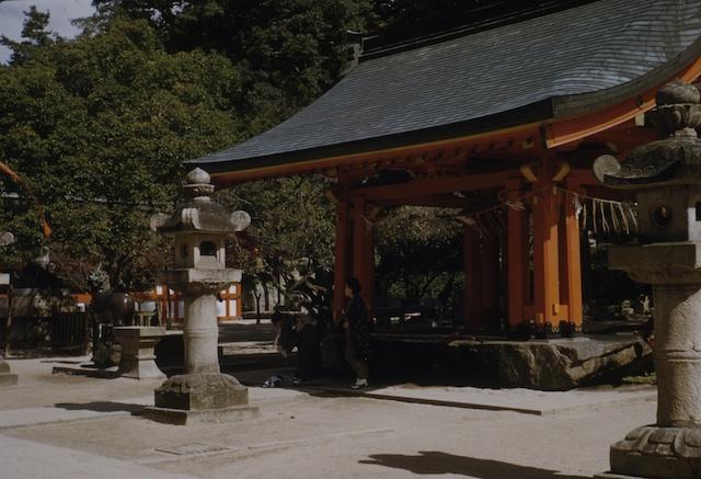 00.daizaifu(15).jpg