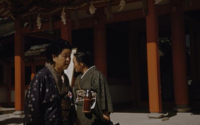 00.daizaifu(17).jpg
