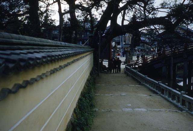 00.daizaifu(17a).jpg