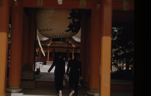 00.daizaifu(19).jpg