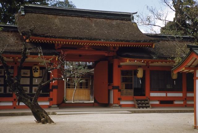 00.daizaifu(21a).jpg