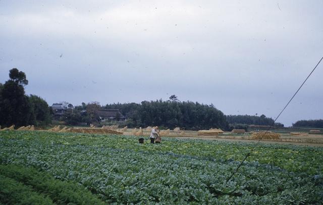 52.11.Itazjuke->Fukuoka.009.jpg