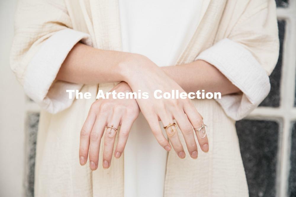 Artemis Banner.jpg